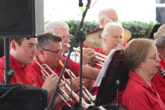2019 Strawberry Faire - Playing the gig!